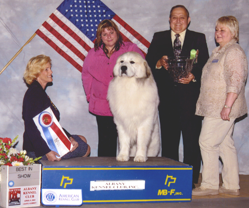 Devon's first Breeder/Owner Handled Best in Show!