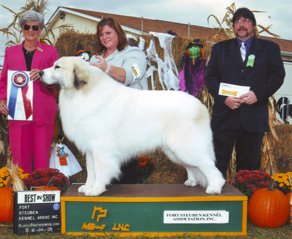 Devon wins his 7th All-Breed Best in Show!