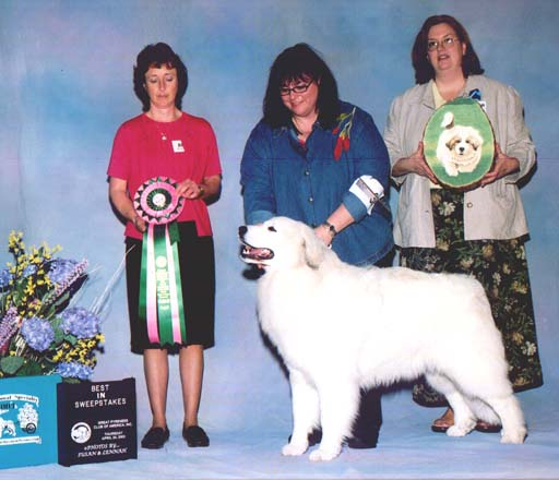 Trixie winning Best in Sweepstakes at the 2003 GPCA National Specialty under breeder judge Lee Trowbridge